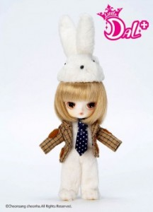 Little Dal + de 2008 White Rabbit