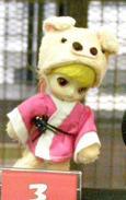prototypes de 2009 Little Dal + Pigsy
