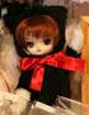 Prototype Dal Black Bear 2009