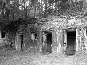 Verdun Photo Bunker Noir et Blanc