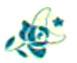 Mes Jolies Sirènes Night Flower symbol