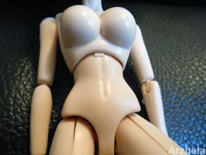 T1 body