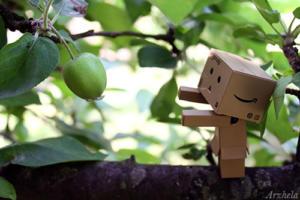 Danbo mini apple